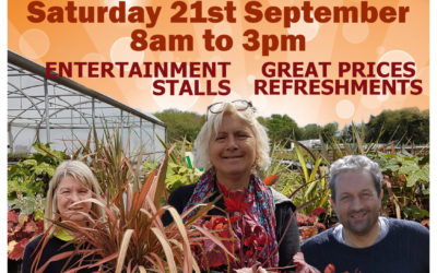 Plant Sale and Autumn Fayre coming soon….